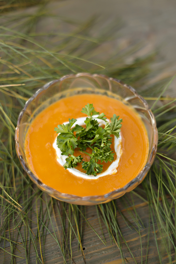 Carrot Curry Ginger Soup-11790