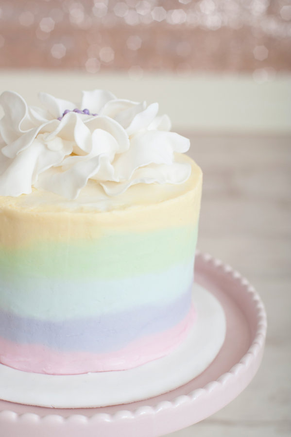 Rainbow Sherbet Cheesecake-12950