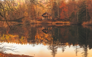 autumn 2021154 1920 320x200 - Your Fall Home Maintenance Checklist