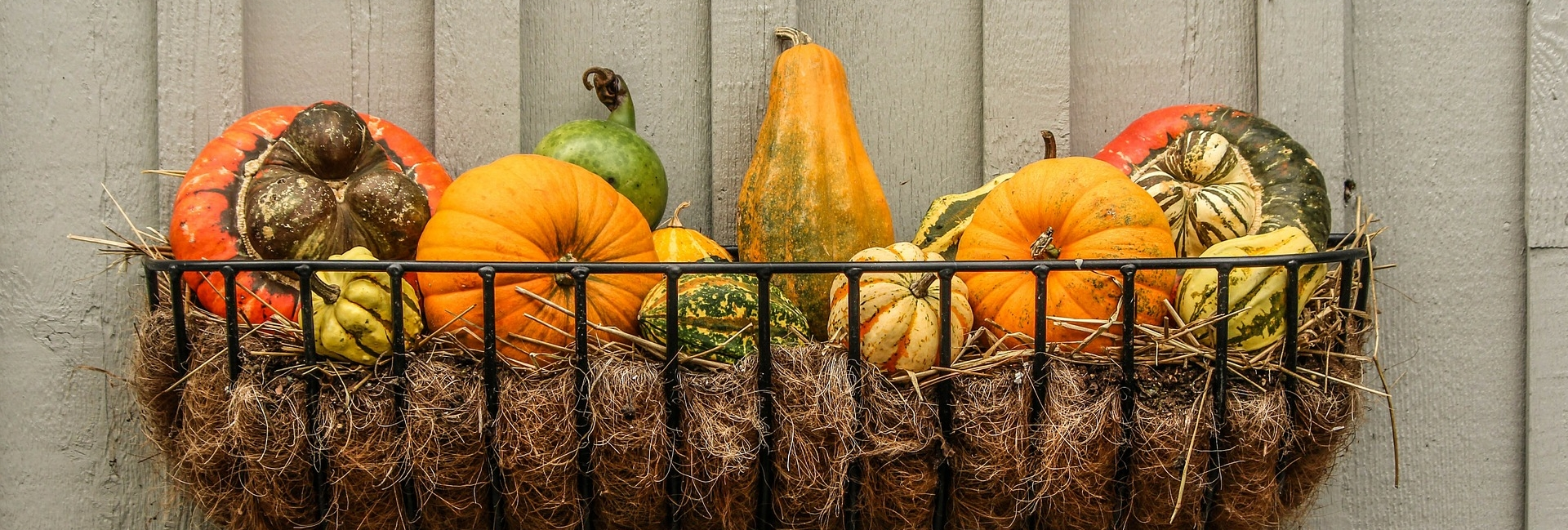 gourds 204929 1920 1920x649 - Tips to Get The Outside of Your Home Ready for Fall