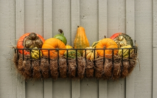 gourds 204929 1920 320x200 - Tips to Get The Outside of Your Home Ready for Fall