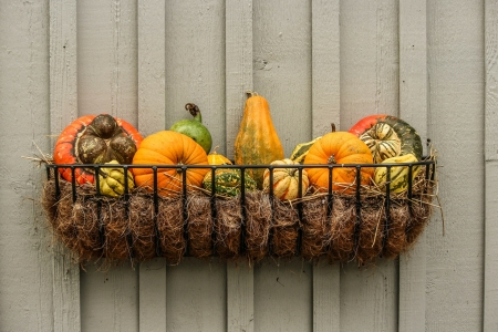 gourds 204929 1920 450x300 - Tips to Get The Outside of Your Home Ready for Fall
