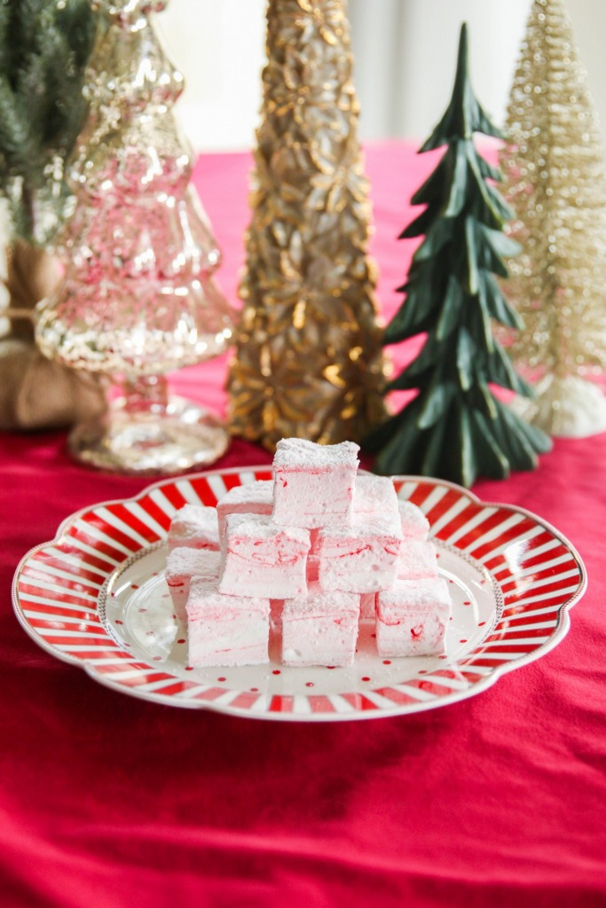 Holiday Recipe Guide 3 Treats for the Season 12 683x1024 - Holiday Recipe Guide: 3 Treats for the Season